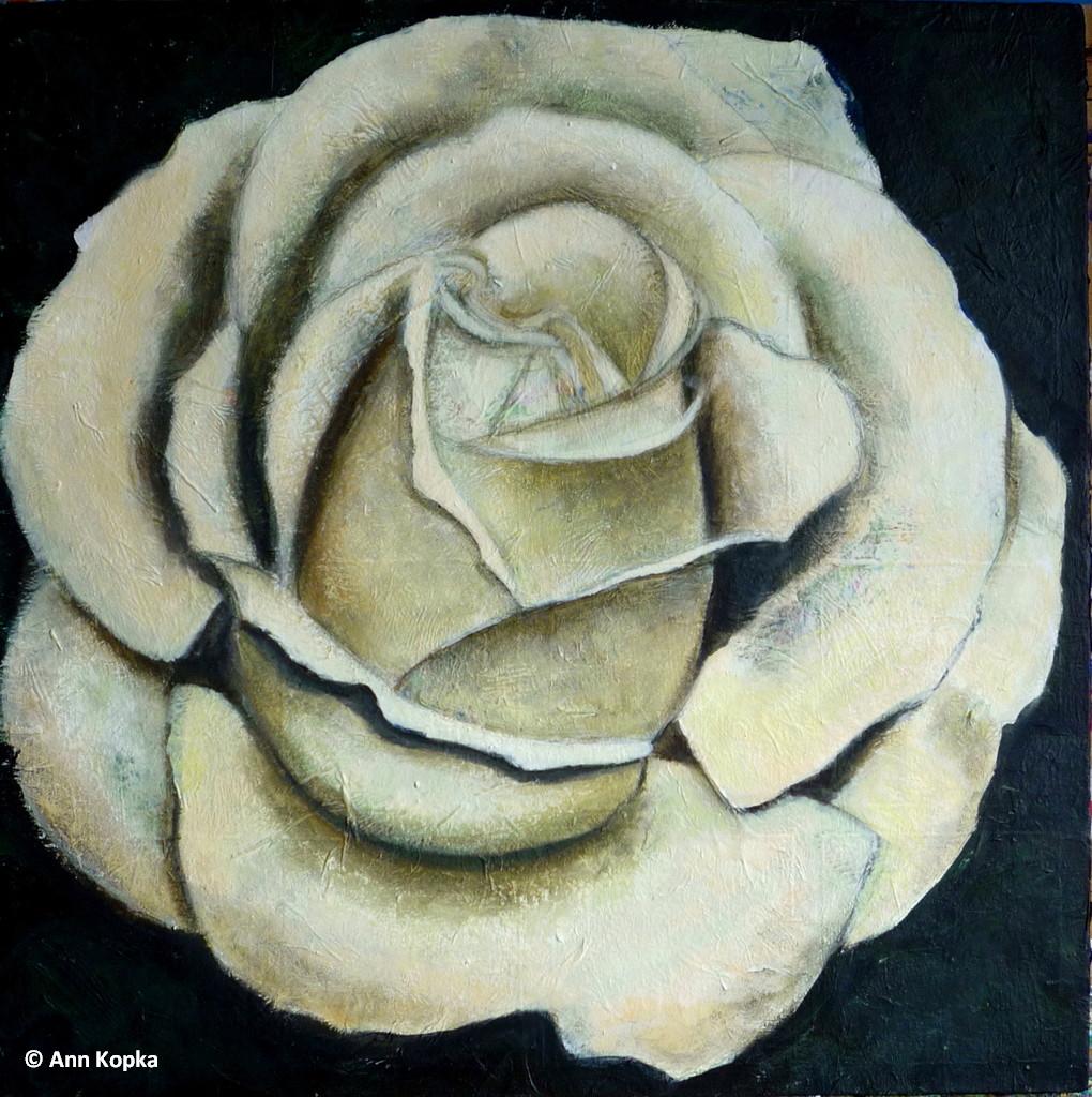477: Stone Rose 2